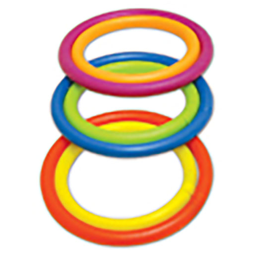 Competition Aqua Dive Rings Game